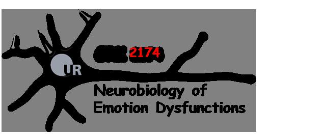 Logo GRK 2174